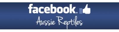 Aussie Reptiles - Facebook